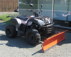 Quadix Discovery Offroad Buggy 4x2 oder 4x4 Modell 2017