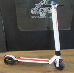 E-Scooter mit Li-ion Akku
