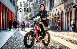 Fantic Bike Issimo